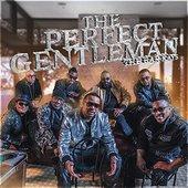 Perfect Gentleman - Single