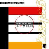 """Ain't Nothing But A Party - The 12"""" Anthology"""