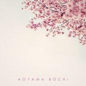 Aoyama Bochi