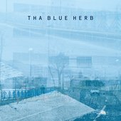 THA BLUE HERB