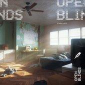 Open Blinds