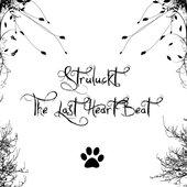 The Last HeartBeat