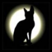 Аватар для MadLory
