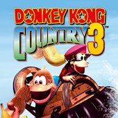 Donkey Kong Country 3: Double the Trouble!