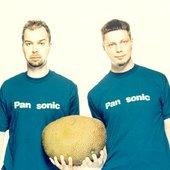 pan-sonic.jpg