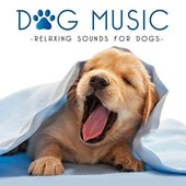 Dog Music - Relaxing Sounds for Dogs
