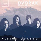 String Quartet No. 10 in E flat Major, Op. 51: III. Andante con moto