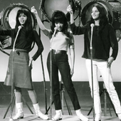 The Ronettes-5.png