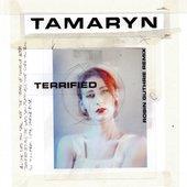 Terrified (Robin Guthrie Remix) - Single