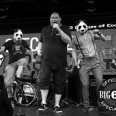 Big Fat Panda - Live at Specialized