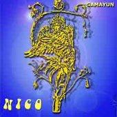 AMPER NICO - Gamayun I