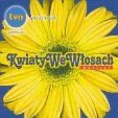 Musical Kwiaty We Wlosach Muzyka Wideo Statystyki I Zdjecia Last Fm