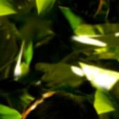 Avatar for trespuntouno