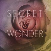 Secret Wonder