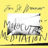 Molocular Meditation (feat. Mark E. Smith)