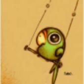Avatar for shellbird