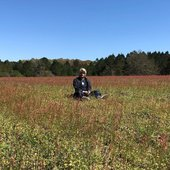 mixed matches in pretty field