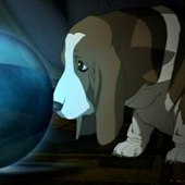 Avatar für moneff