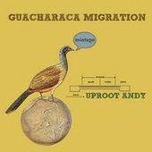 Guacharaca Migration