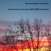 The Spectacular Lo-Fi Years (2001-2008): Level Three