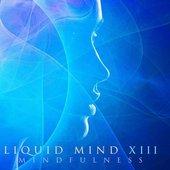 Liquid Mind XIII: Mindfulness