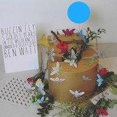 Buzzin' Fly - 5 Golden Years In the Wilderness (Unmixed and Selected By Ben Watt)