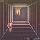 Cosmic Zoo