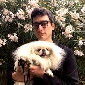 Puppy L Harle