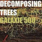 Decomposing Trees
