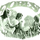 Forest (UK 1968-71)