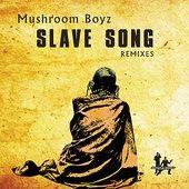 Slave Song 2012 Mixes