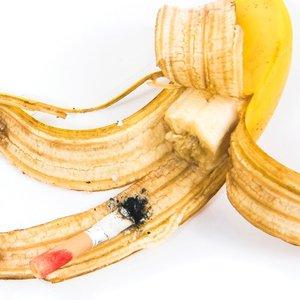 Image for 'Breakfast'