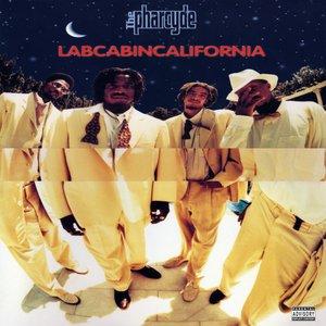 Image for 'Labcabincalifornia'