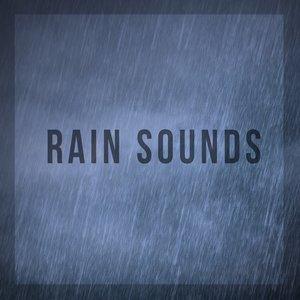 Image for 'Rain Sounds'