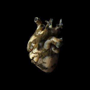 Image for 'Uranium Heart'