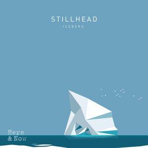 Image for 'Iceberg'