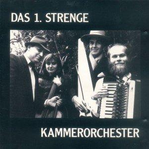 Bild für 'Das 1. Strenge Kammerorchester'