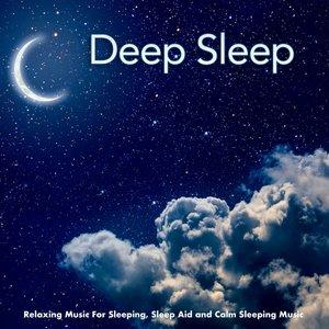 Image for 'Deep Sleep Music Collective'
