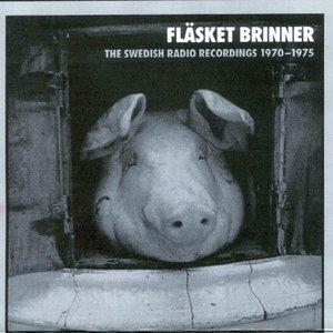 Bild för 'The Swedish Radio Recordings 1970-1975'