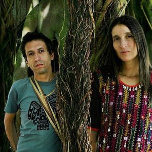 Image for 'Aterciopelados'