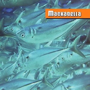 Image for 'Mackabella'