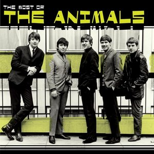Image for 'Most Of The Animals'