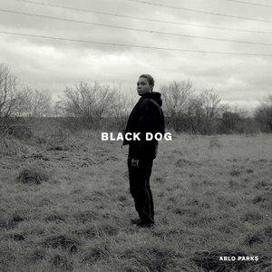 Image for 'Black Dog'