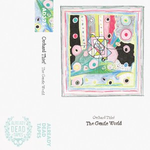 Image for 'The Gentle World'