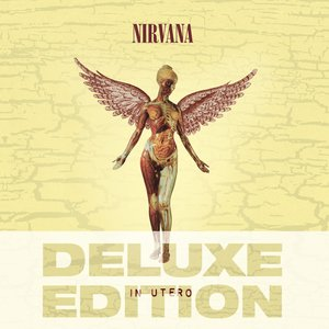 Image for 'In Utero (20th Anniversary Deluxe Edition)'