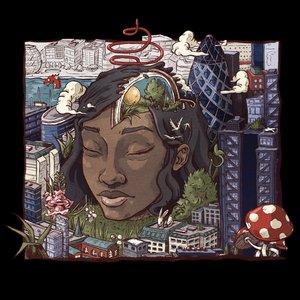 Bild für 'Stillness In Wonderland'