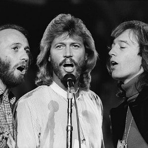 Image for 'Bee Gees'