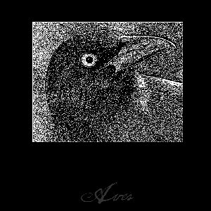 Image for 'Aves'