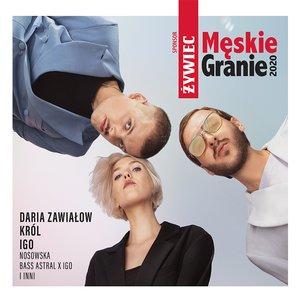 Image for 'Męskie Granie Orkiestra 2020'
