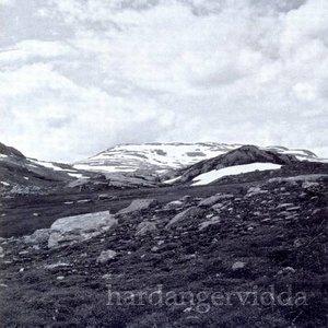 Bild für 'Hardangervidda'